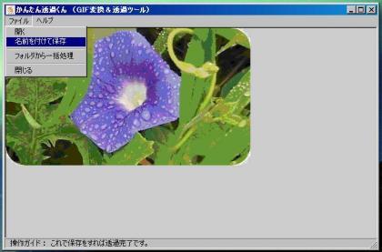 12050213.jpg